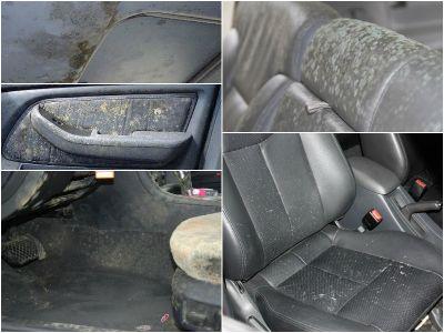 Pelėsis automobilyje - pelėsio kvapas automobilyje - 860651043