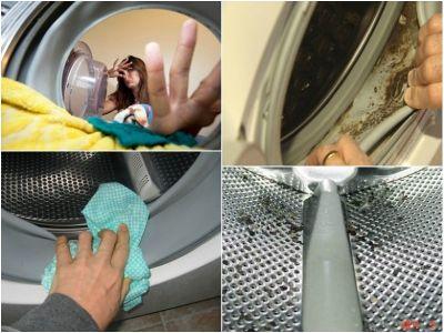Pelėsis skalbimo mašinoje skalbyklėje. Kaip to išvengti - 860651043