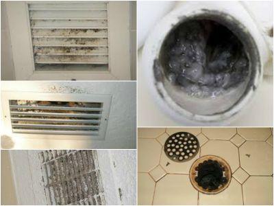 Pelėsis ventiliacijos sistemose ir sanitariniuose mazguose