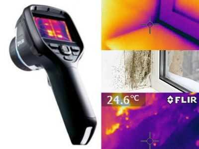 pelėsio atsiradimo priežasčių nustatymas su termovizija - 860651043